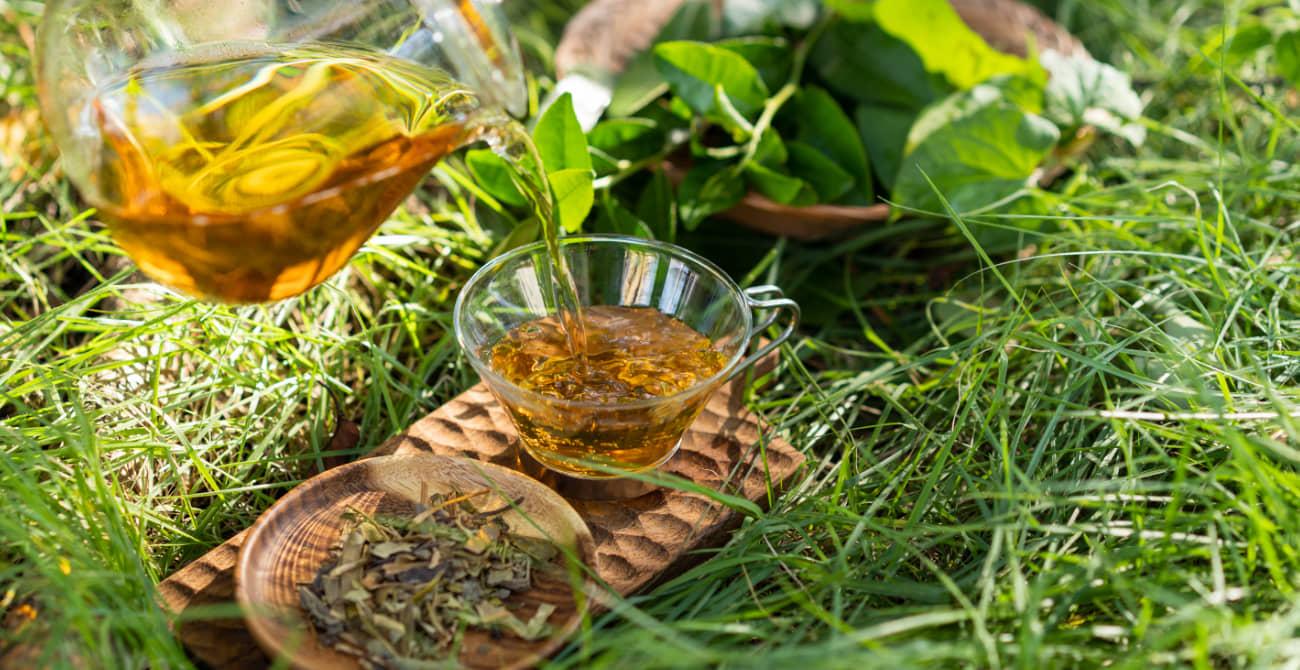 薬膳野草ほうじ茶