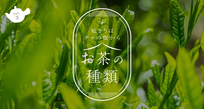 始まりはチャの樹からお茶の種類