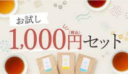 お試し1,000円セット