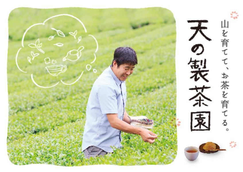 山を育てて、お茶を育てる。〜天の製茶園